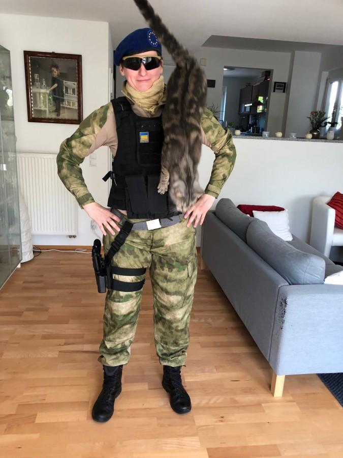 Cat-Content mit Major