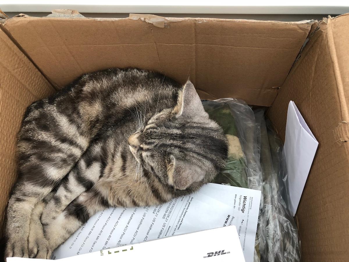 ATACs Lieferung ohne Katze